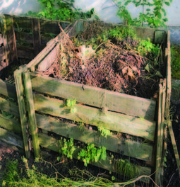 Start Composting this Fall | The Miracle of Fall | Scoop.it