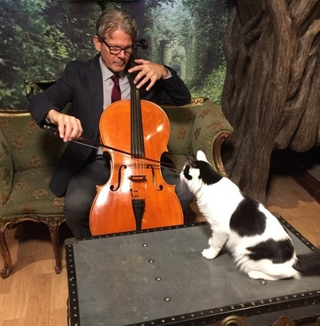Meet the Man Who Makes Music for Cats | enjoy yourself | Scoop.it