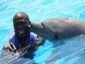 Kevin Hart vs. a Dolphin | Ocean Conservation | Scoop.it