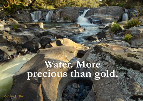 Ban all Toxic Mineral and Gold Mining Exploration on the Dorrigo Plateau in New South Wales | Gold and Antimony - Environmental Harm | Scoop.it
