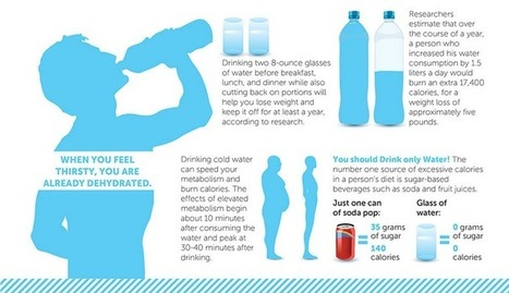 Why Dehydration Is Making You Fat And Sick | John Duffy's Personal Empowerment | Scoop.it