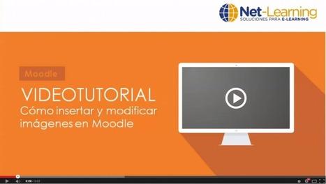 Consejos sobre el uso de imágenes en Moodle | mOOdle_ation[s] | Scoop.it
