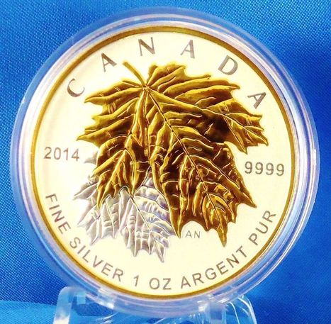 Canada 2014 Maple Leaf Fractional Set 5-coin Silver with Gold - Mintage: 9,999 | CLOVER ENTERPRISES ''THE ENTERTAINMENT OF CHOICE'' | Scoop.it
