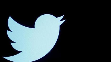 Meilleur ami des politiques, Twitter se prépare pour la course à l'Élysée | Municipales 2014 Val d'Europe | Scoop.it