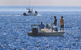 Report: Climate change putting fish at risk | SeacoastOnline.com | Seafood | Scoop.it