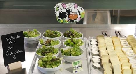 "Agriculture biologique : ""grandir vite et bien !"" | Alim'agri | Agroalimentaire Distribution Marketing et Alimentation | Scoop.it"