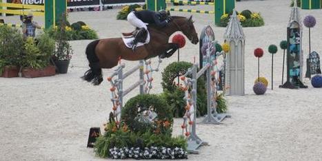 Jeux équestres mondiaux: la Normandie a-t-elle misé sur le bon cheval?   JEM 2014 Normandie   Scoop.it
