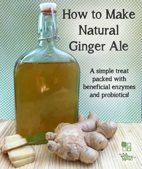 Natural Ginger Ale Recipe - Homemade Fermented Probiotic Drink | Wellness Life | Scoop.it