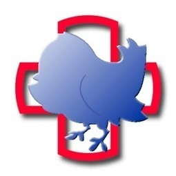4 Reasons Twitter Is a Great Health Resource | healthcare technology | Scoop.it