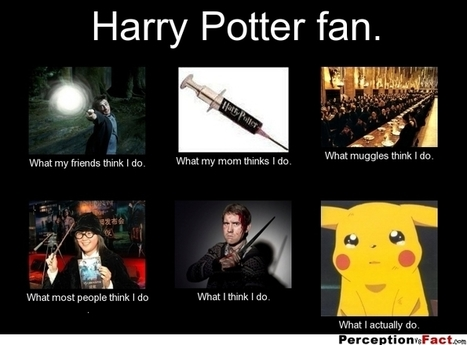 Harry Potter Fan | What I really do | Scoop.it
