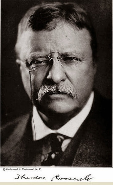 Theodore Roosevelt Reveals the Ugly Truth Behind Ted Cruz's Federal Land Sell-off Bill | Nomadic Politics | AUSTERITY & OPPRESSION SUPPORTERS  VS THE PROGRESSION Of The REST OF US | Scoop.it
