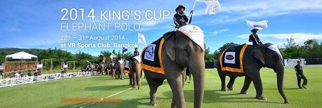 ELEPHANT POLO 2014: AN ELEPHANTASTIC EVENT IN BANGKOK! | Asia Travel Tips | Scoop.it