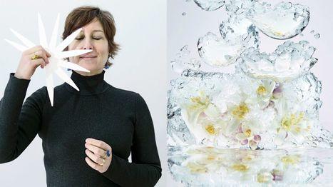 Daniela Andrier raconte la fleur d'oranger. | Influences olfactives | Scoop.it