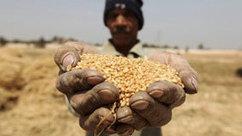 Paraguay en crise alimentaire, plus de 40 pour cent de paysans concernés | Questions de développement ... | Scoop.it