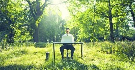 Green Jobs. A Milano il primo sportello per lavorare in green economy | Marketing & Bikes: nuovi strumenti di comunicazione e di social business. | Scoop.it