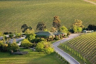 Five to Try: Yarra Valley Cellar Doors - Smudge Eats | Wine in the World | Scoop.it