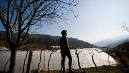 Tired of austerity, many Portuguese returning to the land | innovation and diversity | Scoop.it