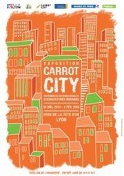 CAROTT CITY EST A LYON ! - Leblogdelaville | Horticulture urbaine et périurbaine | Scoop.it
