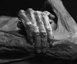 Mummy medicine: how ancient bodies can help create modern cures | Classical musings | Scoop.it