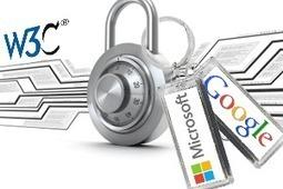 Web : les DRM en bonne voie d'être intégrés dans les standards du W3C   régulation d'internet ???!!!   Scoop.it