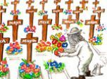 Les abeilles tombent comme des mouches | Shabba's news | Scoop.it