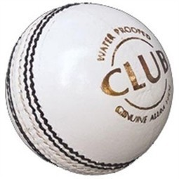 SG Cricket Ball | Sports Equipment Online India | Scoop.it