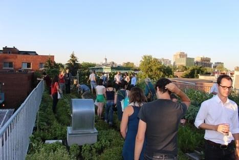 À Montréal, des popotes roulantes nourrissent plus de 2 millions de personnes par an | Social Entrepreneurship, Social Innovation | Scoop.it