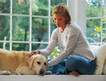 Rising health-care costs: It's a pet problem, too | cats & dogs! | Scoop.it