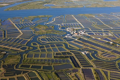 "Stunning aerial photos of the world's aquaculture operations (""fishing's never been the same"") 