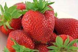 Strawberry Beauty Treats For Skin | healthregards.com | Latest Health News | Scoop.it