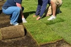 The Advantages of Choosing the Right Artificial Grass Installation Services in Paradise Valley | All about choosing the best artificial turf installers in Paradise Valley | Scoop.it