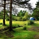 5 Best Places For Camping In Forests UK | Camping Activities | Scoop.it