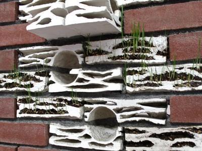"Hand-Sculpted ""Brick Biotopes"" Turn Brick Walls Into Wildlife Habitats (Video) | Vertical Farm - Food Factory | Scoop.it"