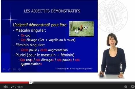 Démonstratifs: Adjectifs et pronoms - Grammaire AUDIOVISUELLE sur Internet | français langue étrangère | Scoop.it