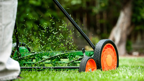 The Lazy Homeowner's Guide to Prepping the Yard for Spring - Real Estate News and Advice - realtor.com | Philippine Real Estate | Scoop.it