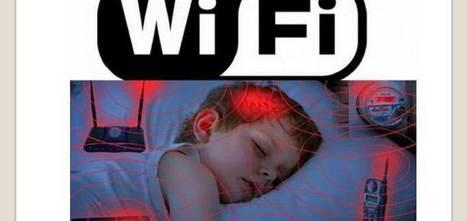 Le Wi-Fi: un tueur silencieux qui nous tue lentement | Parent Autrement à Tahiti | Scoop.it