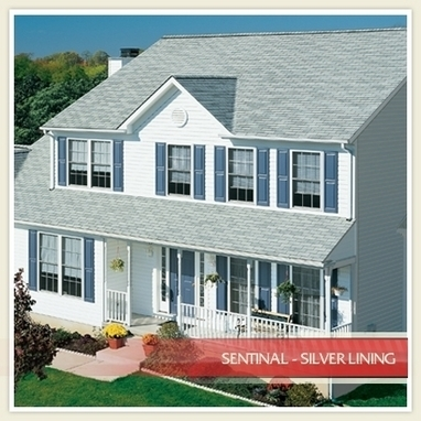 A Guide To Well-Maintained Roofs And Increasing Property Value | Anything Under The Sun | Scoop.it