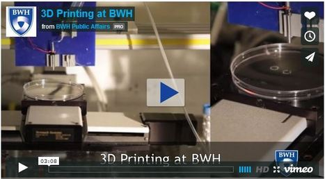 3D Bioprinting - Brigham and Women's Hospital | Stem Cells & Tissue Engineering | Scoop.it