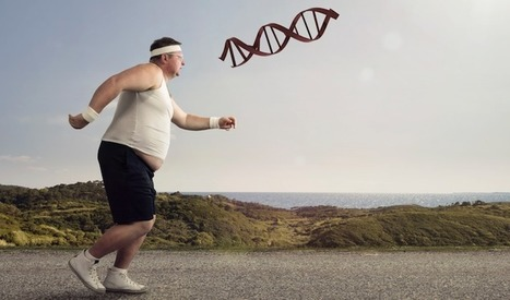 Scientists May Have Found The Obesity Gene   Digital Health Revolution   Scoop.it