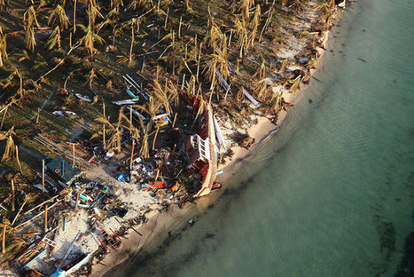 Typhoon Fuels Call for Global Warming Compensation Funds | Sustain Our Earth | Scoop.it