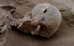 10,000-Year-Old Massacre Does Not Bolster Claim That War Is Innate | La Mémoire en Partage | Scoop.it