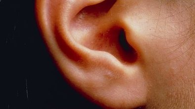 Inner ear 'link to hyperactivity ' | Welfare, Disability, Politics and People's Right's | Scoop.it