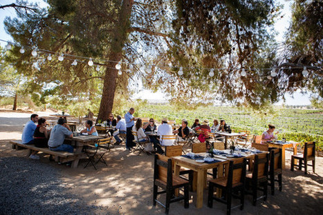 Is Baja, Mexico, really the next Napa? | Vitabella Wine Daily Gossip | Scoop.it