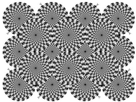 The Rotating Snakes Are All In Your Mind | The brain and illusions | Scoop.it