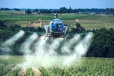 En Bourgogne, les hélicoptères à pesticides sont de retour   Abeilles, intoxications et informations   Scoop.it