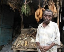 Traditional medicine unsustainable in Kenya | Erba Volant - Applied Plant Science | Scoop.it