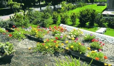 El jard n urbano ocupa techos y terrazas for El jardin urbano