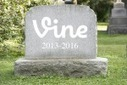Twitter Just Shut Down Vine 4 Years After Buying It for $30 Million | Public Relations & Social Media Insight | Scoop.it