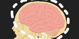 Does Brain Training Work? | The Scientist Magazine® | Brain Health and Fitness | Scoop.it
