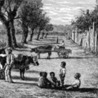 Slave Narratives in History and the Law